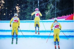 Skicross_Damen_OEDBERG_2016